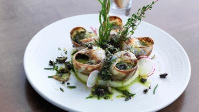 Snails bourguignon