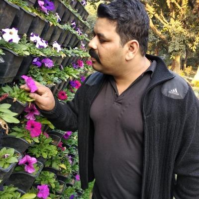 Photo from Ankur Sharma