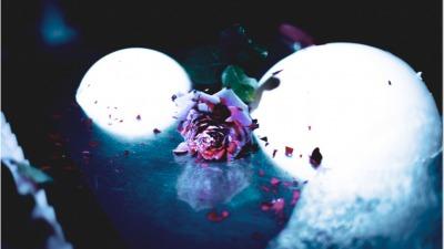 Rose winter ball