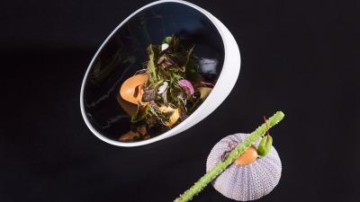 Salad 1 lg