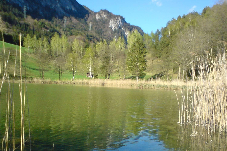 Private Chef in Politischer Bezirk Kufstein header