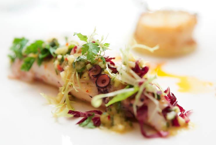 Ya puedes disfrutar de la alta cocian gracias a un Chef a Domicilio con Take a Chef - Takeachef.com