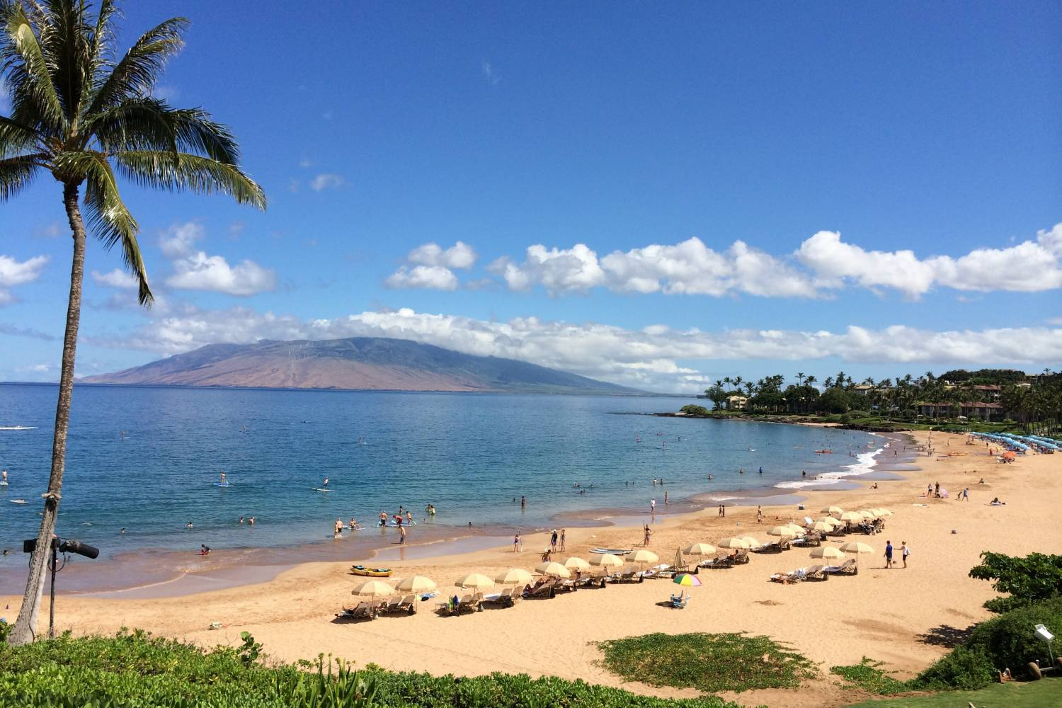 Best Private Chef selection in Wailea - Take a Chef, header