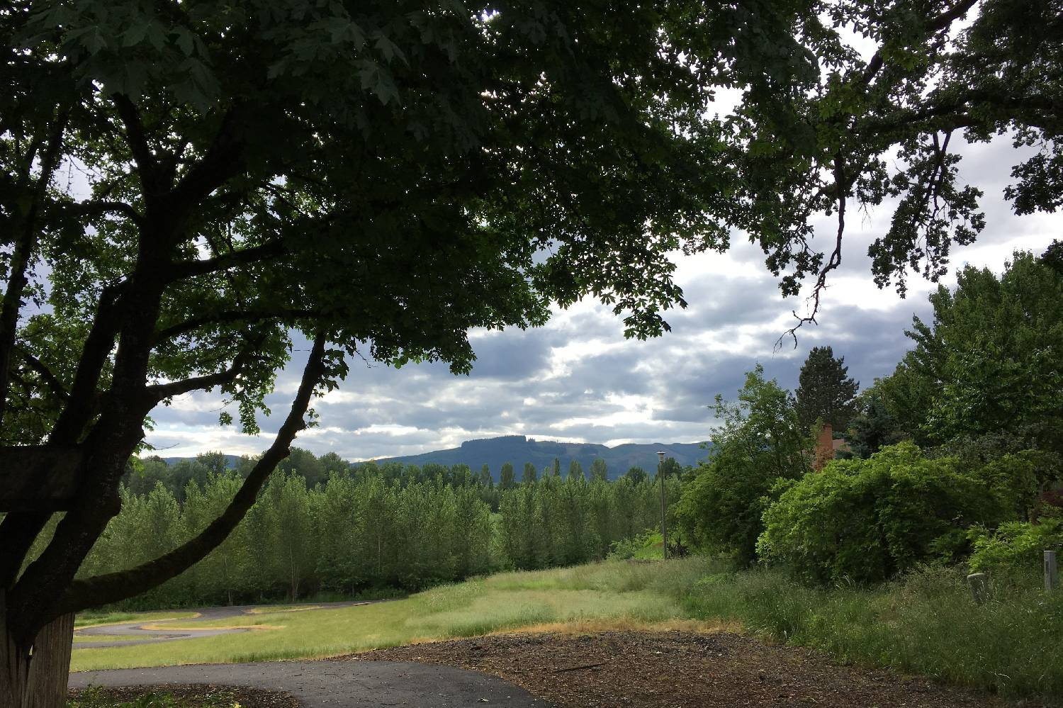 Private Chef in Forest Grove header
