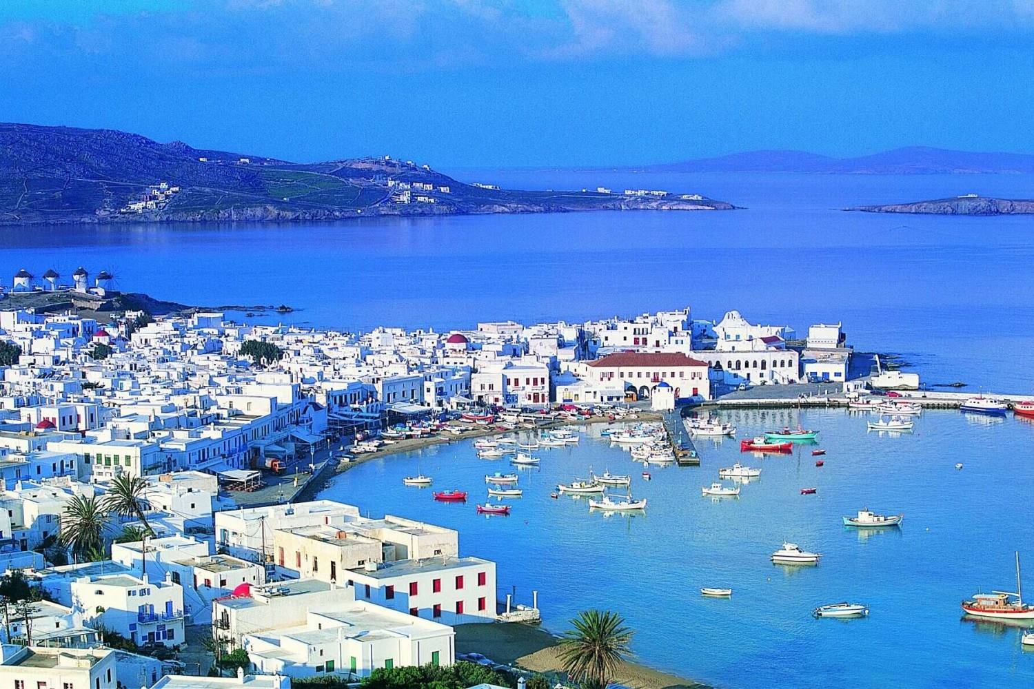 Book a Personal Chef in Mykonos Town for your holidays