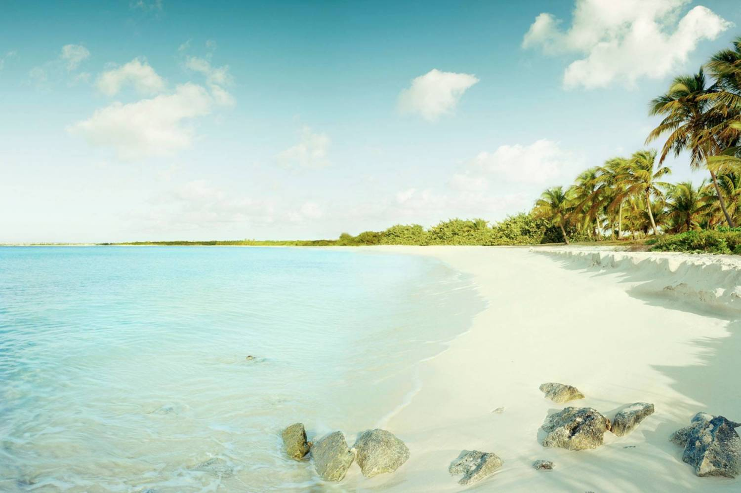 Amazing views of Rendezvous Bay´s beach - Take a Chef