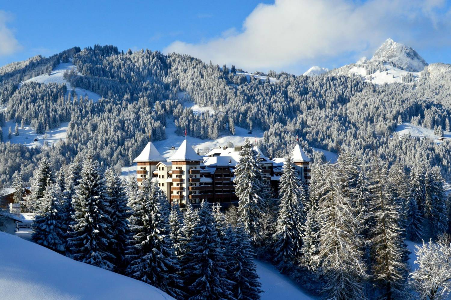 Amazing views of Gstaad - Take a Chef