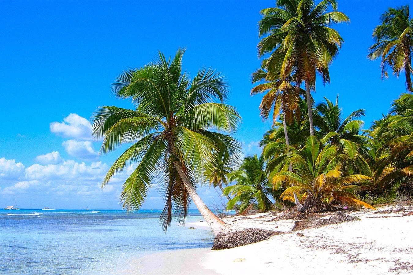 Beautiful views of Long Path´s beach - Take a Chef