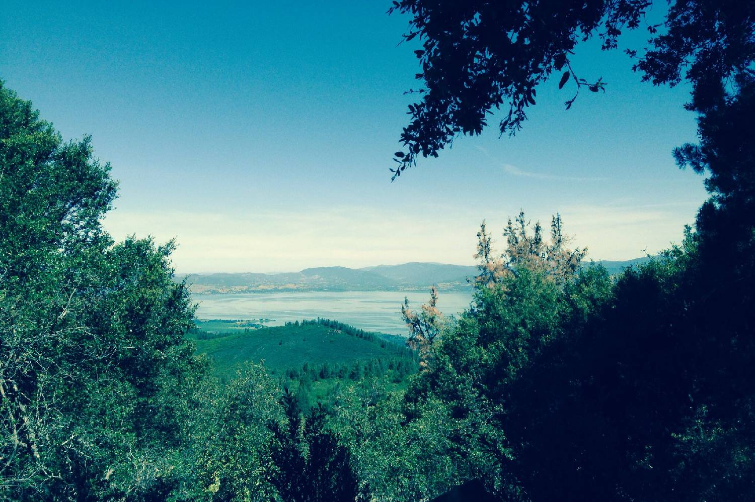 Private Chef in Clearlake header