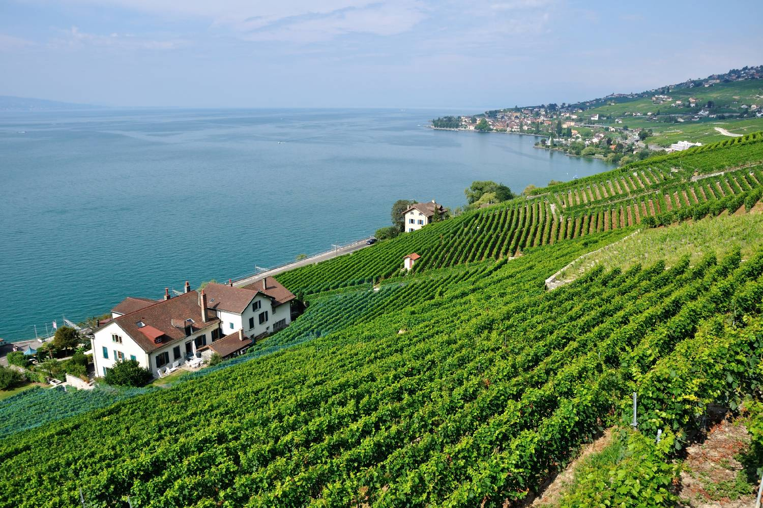 Private Chef in Canton of Vaud header
