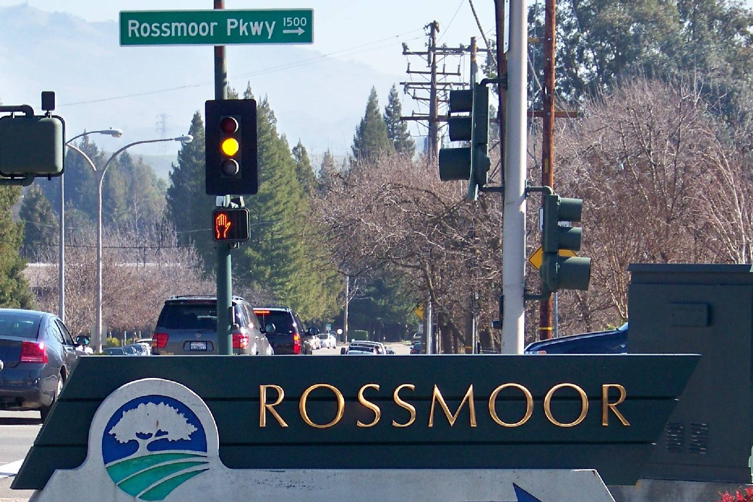Private Chef in Rossmoor header
