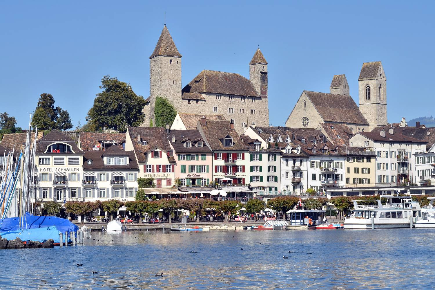 Private Chef in Rapperswil header