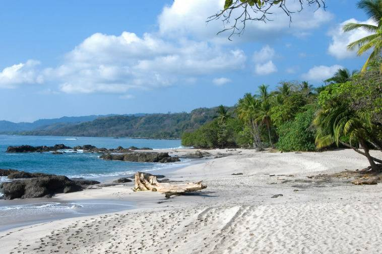 Beautiful views of Montezuma´s beach - Take a Chef