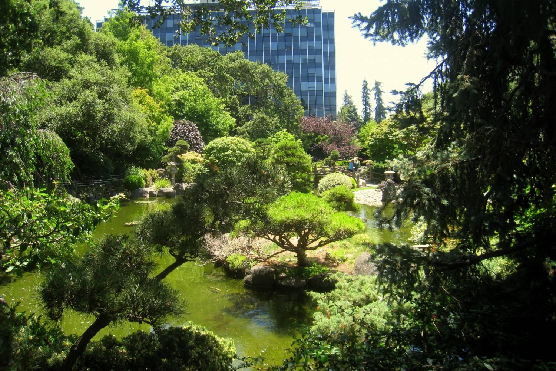 Japanese garden in san mateo
