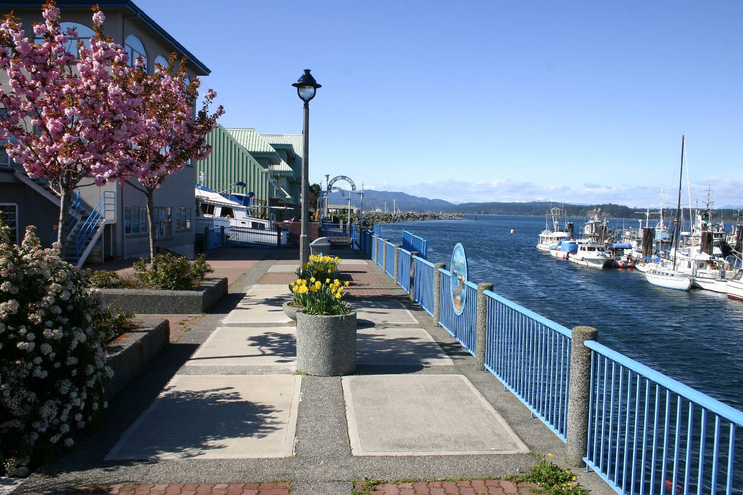 Private Chef in Campbell River header