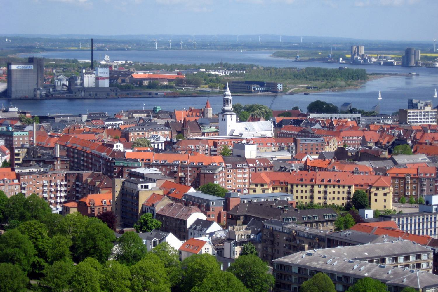 Private Chef in Aalborg header