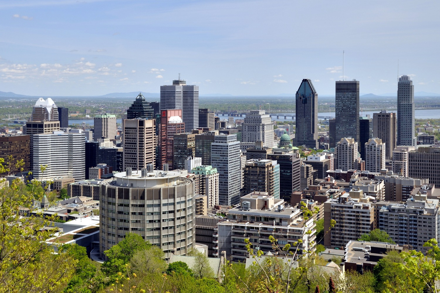 Private Chef in Montreal header