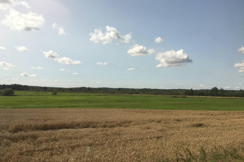 Landscape in Randers - Take a Chef